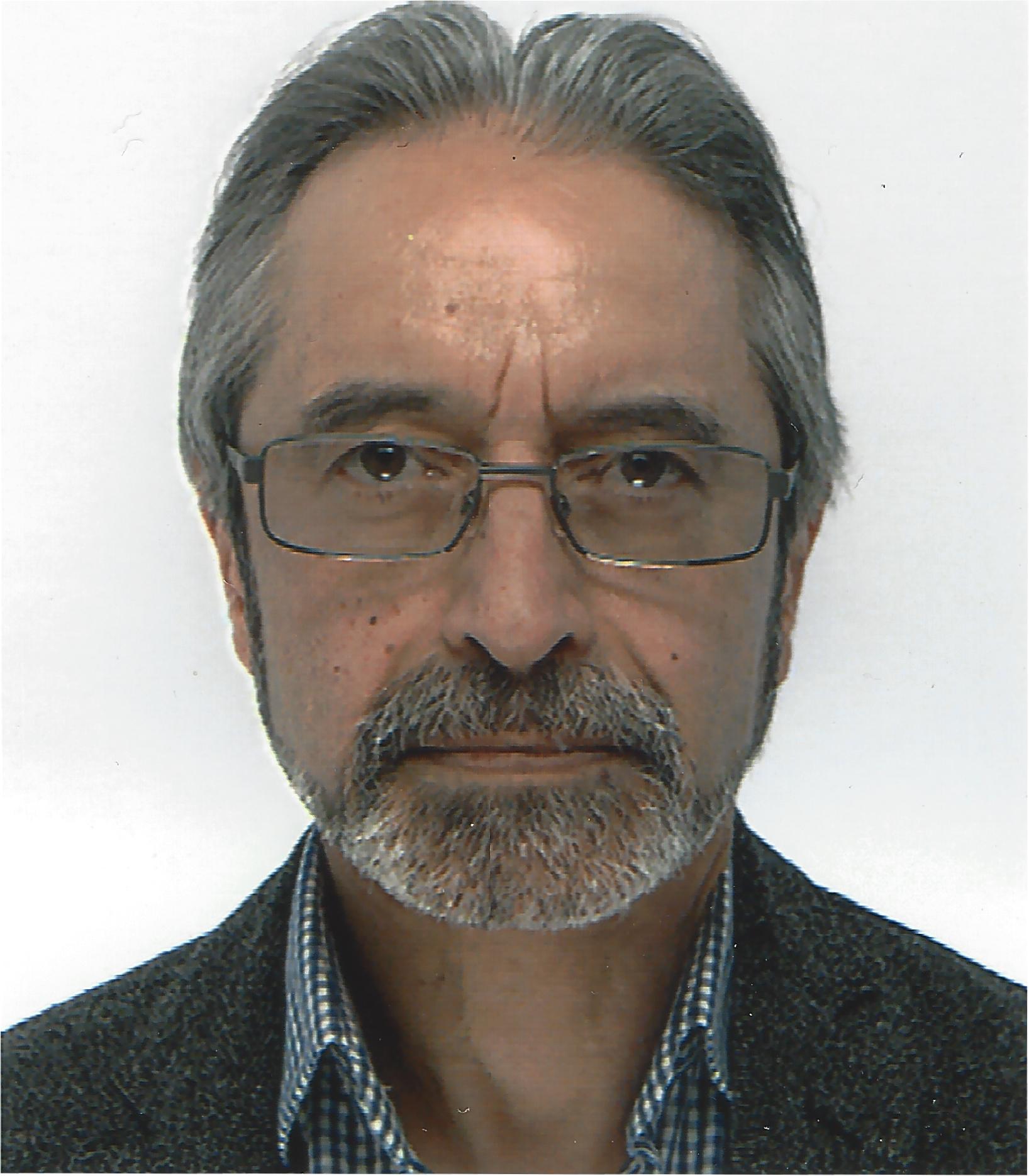 Ali G. Hessami